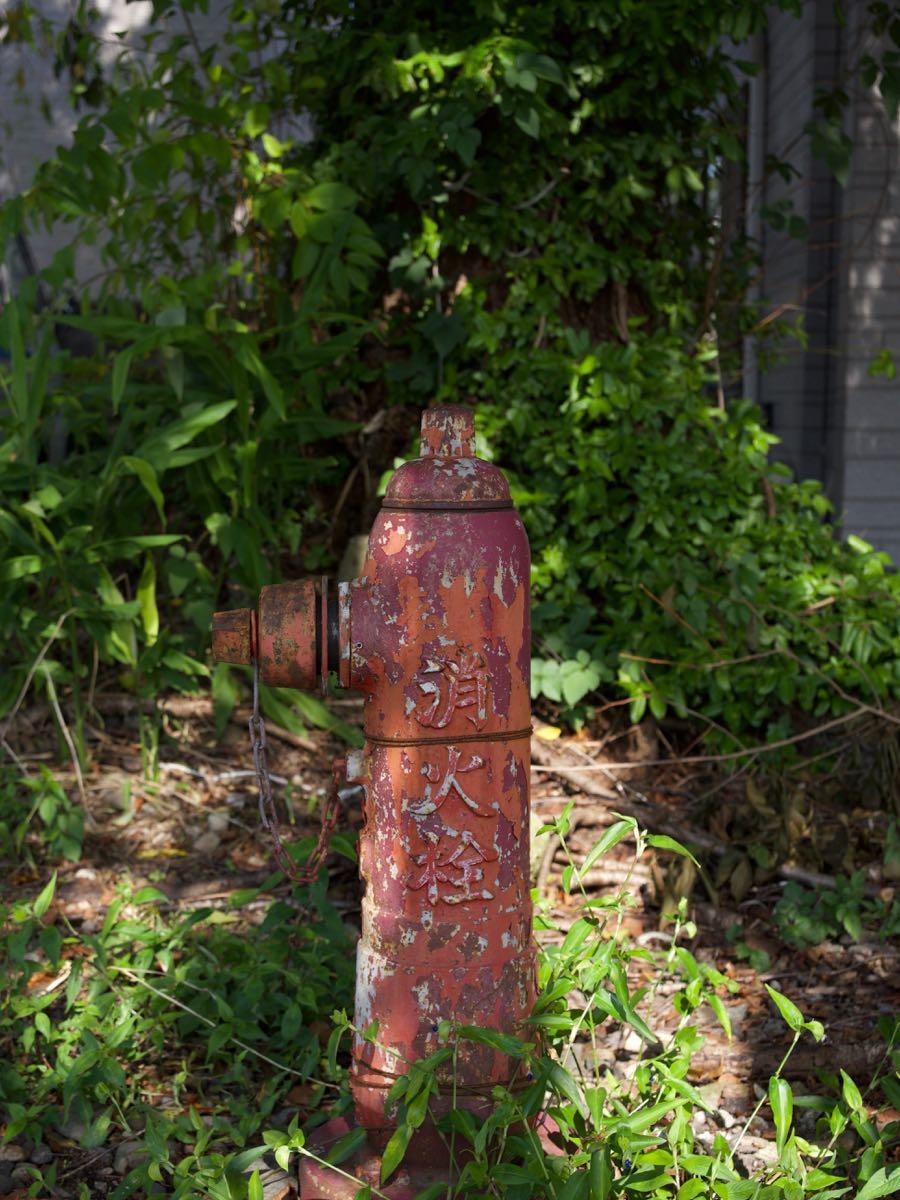 ボロボロの消火栓に共感する 老兵は死なず