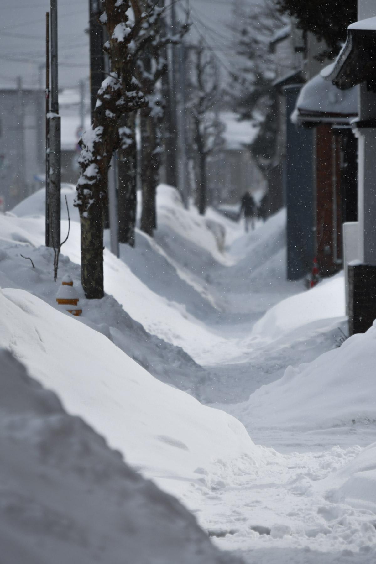 雪山が増殖する歩道 NIKON D500 + NIKKOR 70-300mm