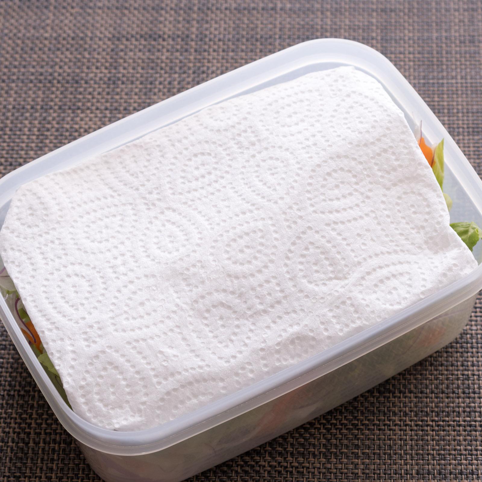 ペーパータオルを被せ冷蔵庫で保存 NIKON D500 + SIGAMA