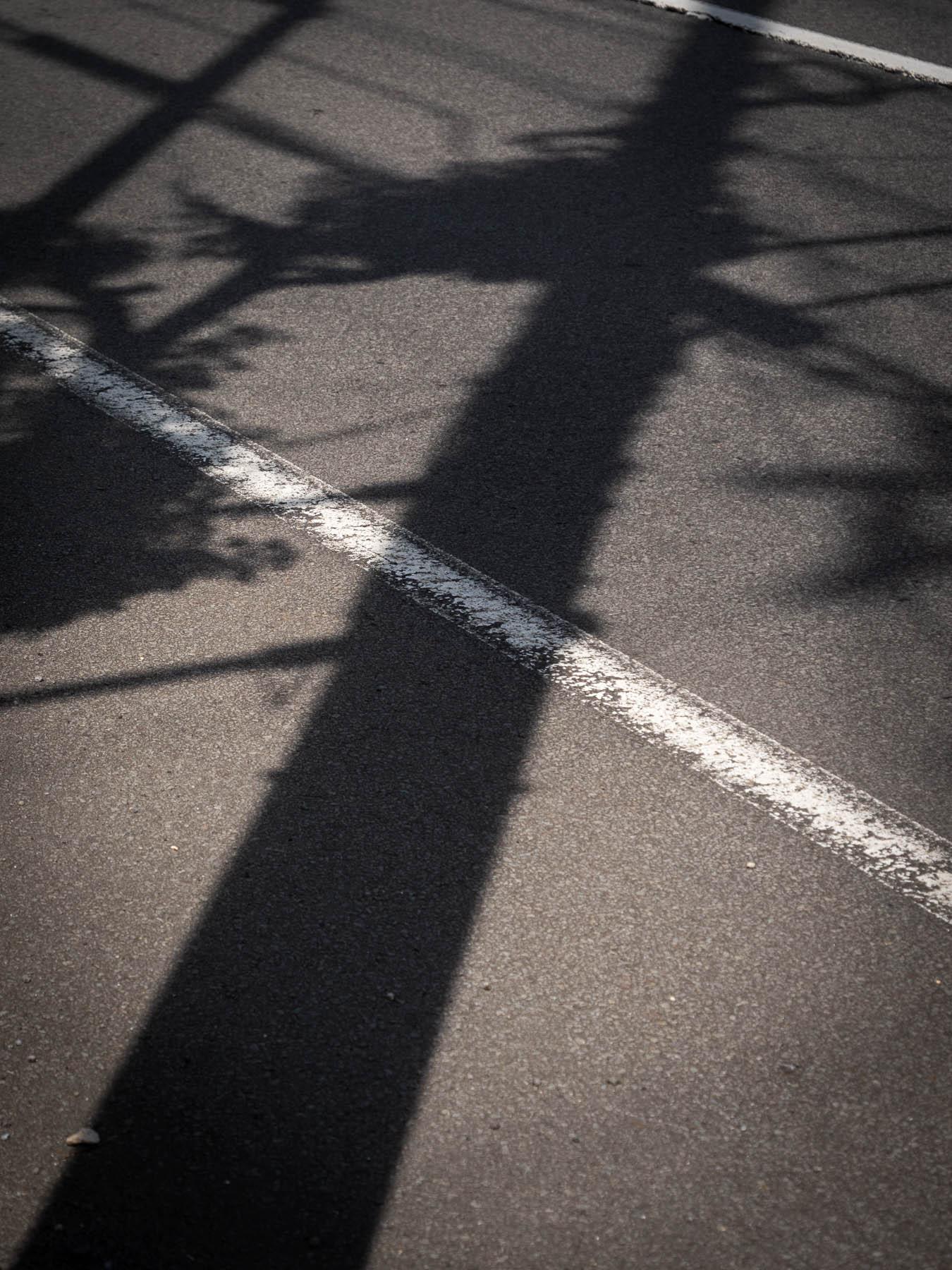 アスファルトの照り返しと黒々とした電信柱の影