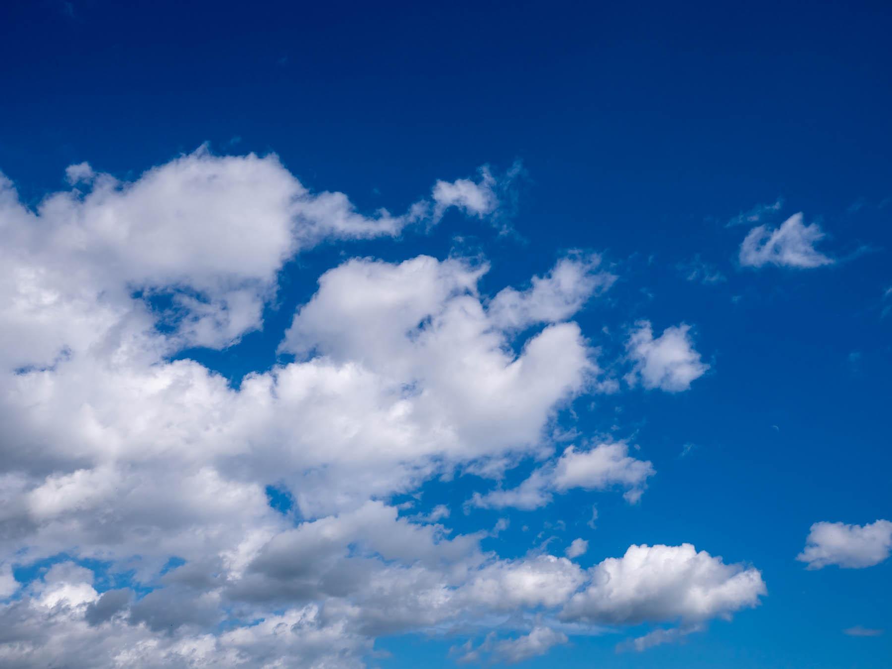鮮やかな空の青さと雲の白さの夏模様