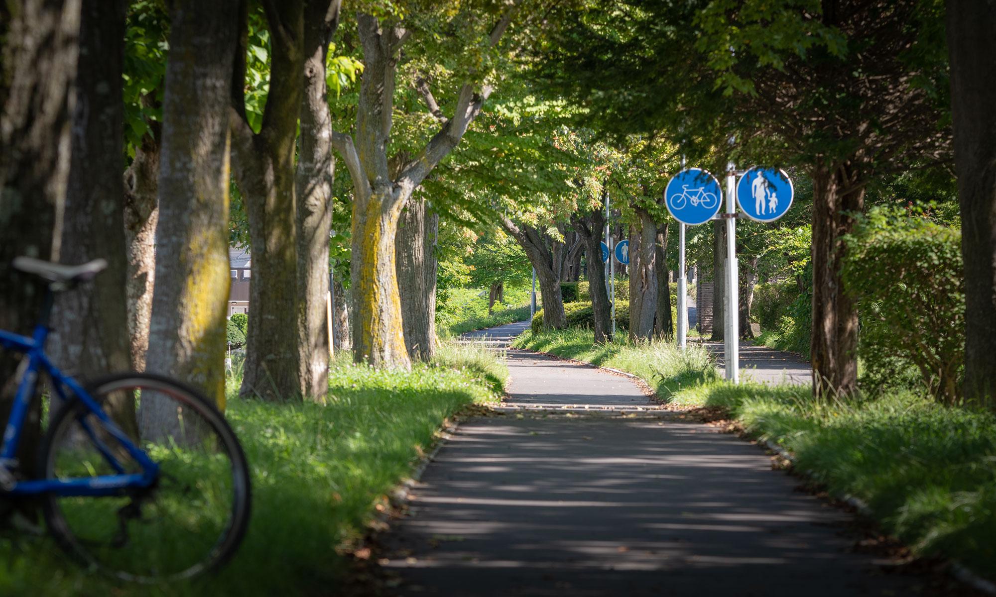 深堀町付近の緑園通 湯川方向のゆるい登り坂