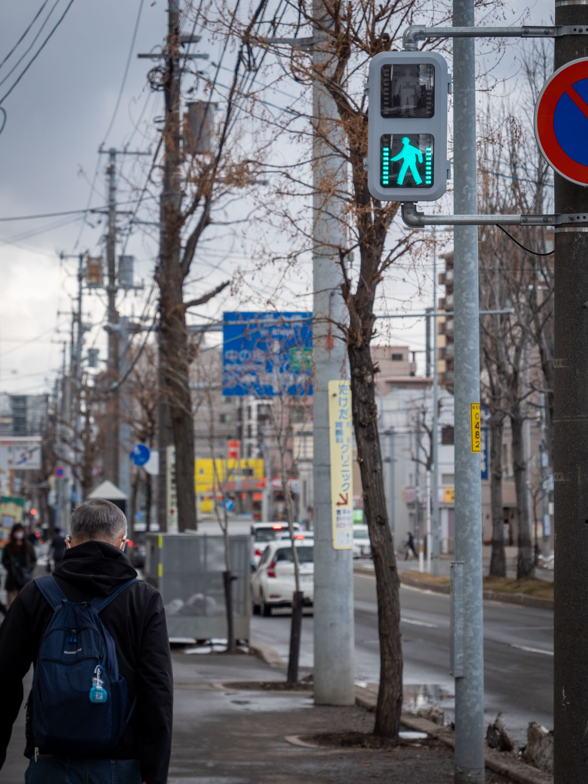 札幌市白石区菊水1条付近のタイマー付横断歩道 DMC-GX8 + LEICA DG 12-60mm